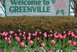 Cheap hotels in Greenville, Alabama