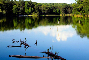 Discount hotels and attractions in Guin, Alabama
