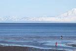 Cheap hotels in Clam Gulch, Alaska