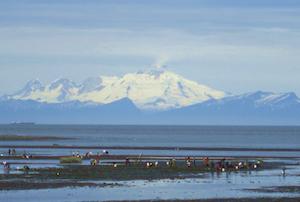 Hotel deals in Clam Gulch, Alaska