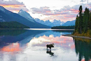 Hotel deals in Summit Lake, Alaska