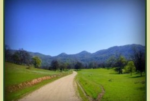 Discount hotels and attractions in Ahwahnee, California
