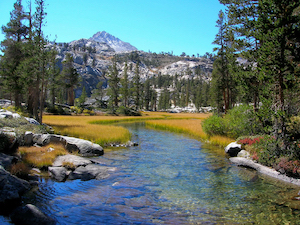 Discount hotels and attractions in Alpine Meadows, California