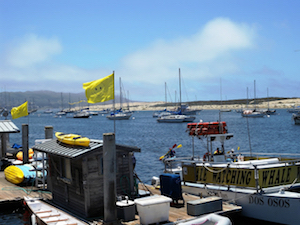 Discount hotels and attractions in Cayucos, California