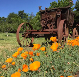 Discount hotels and attractions in Martinez, California
