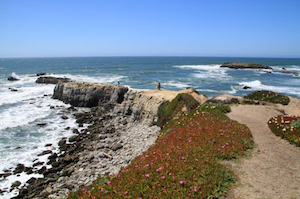 Discount hotels and attractions in Pescadero, California