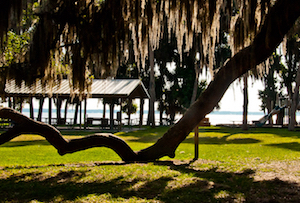 Cheap hotels in Ocklawaha, Florida
