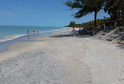 Hotel deals in Tropical Gulf Acres, Florida