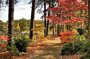 Discount hotels and attractions in Loganville, Georgia