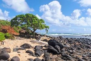 Cheap hotels in Kapaa, Hawaii
