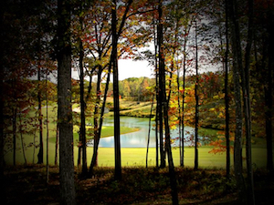 Discount hotels and attractions in Burkesville, Kentucky