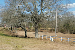 Discount hotels and attractions in Wiggins, Mississippi