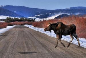 Hotel deals in Anaconda, Montana