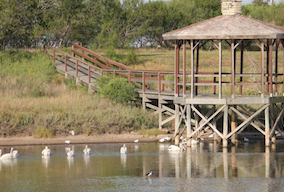 Discount hotels and attractions in Bishop, Texas