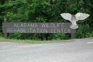 Hotel deals in Alabaster, Alabama