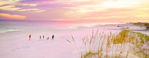 Discount hotels and attractions in Edith Hammock, Alabama