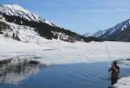 Discount hotels and attractions in Moose Pass, Alaska