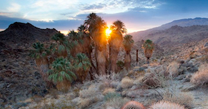 Discount hotels and attractions in Cajon Junction, California