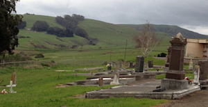 Discount hotels and attractions in Tomales, California
