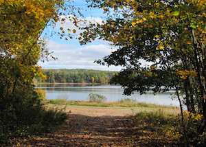 Discount hotels and attractions in Storrs, Connecticut