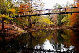 Discount hotels and attractions in High Springs, Florida