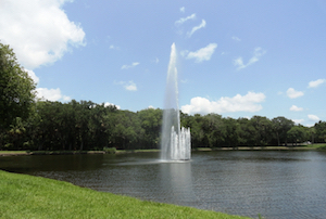 Hotel deals in The Meadows, Florida