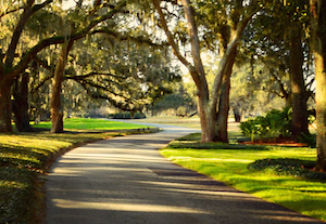 Discount hotels and attractions in Saint Simons Island, Georgia