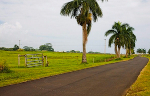 Discount hotels and attractions in Pepeekeo, Hawaii