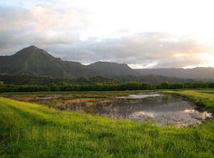 Cheap hotels in Puupehu, Hawaii