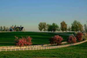 Discount hotels and attractions in Lexington, Kentucky