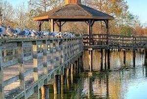 Cheap hotels in Metairie, Louisiana