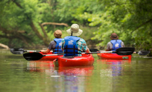 Discount hotels and attractions in Knoxville, Maryland