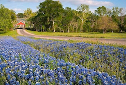 Hotel deals in Chappell Hill, Texas