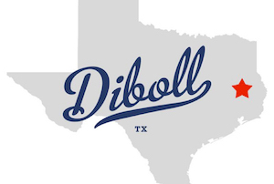Cheap hotels in Diboll, Texas