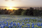 Discount hotels and attractions in Sunnyvale, Texas