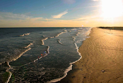 Hotel deals in Surfside Beach, Texas